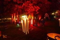 Fabelhaftes Park-Festival [21 von 30 (30.08.2014)]