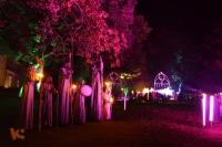 Fabelhaftes Park-Festival [23 von 30 (30.08.2014)]
