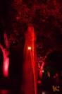 Fabelhaftes Park-Festival [26 von 30 (30.08.2014)]