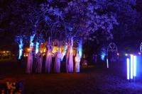 Fabelhaftes Park-Festival [22 von 30 (30.08.2014)]